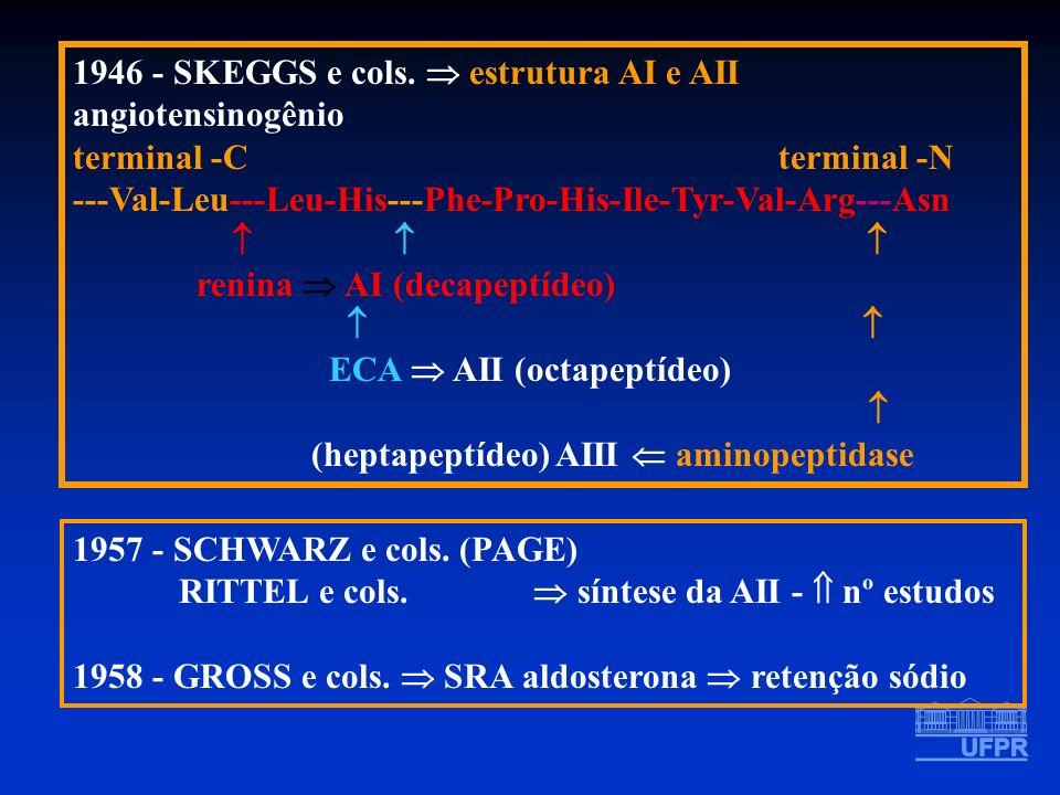 1946 - SKEGGS e cols.  estrutura AI e AII