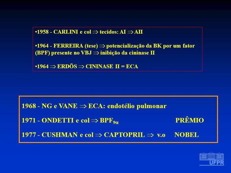 1968 - NG e VANE  ECA: endotélio pulmonar
