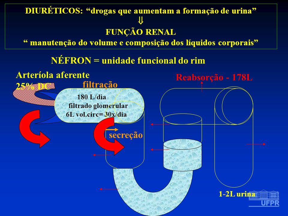 NÉFRON = unidade funcional do rim