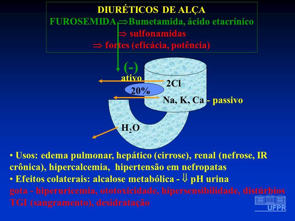 FUROSEMIDA Bumetamida, ácido etacrínico  fortes (eficácia, potência)