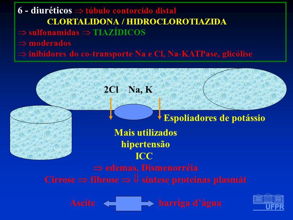 Cirrose  fibrose   síntese proteínas plasmát
