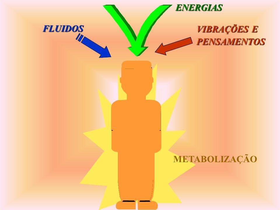 ENERGIAS FLUIDOS VIBRAÇÕES E PENSAMENTOS METABOLIZAÇÃO