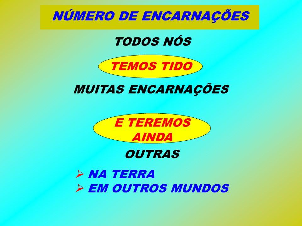 NÚMERO DE ENCARNAÇÕES TODOS NÓS TEMOS TIDO MUITAS ENCARNAÇÕES