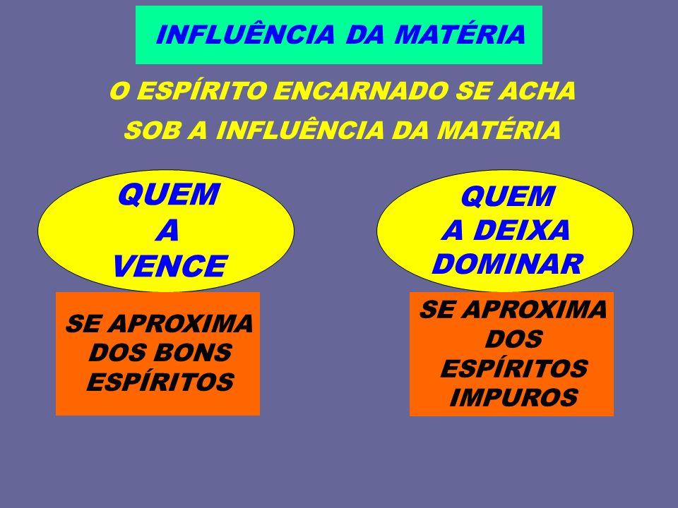 O ESPÍRITO ENCARNADO SE ACHA SOB A INFLUÊNCIA DA MATÉRIA