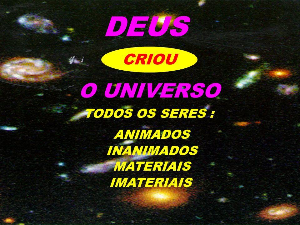 DEUS O UNIVERSO CRIOU TODOS OS SERES : ANIMADOS INANIMADOS MATERIAIS