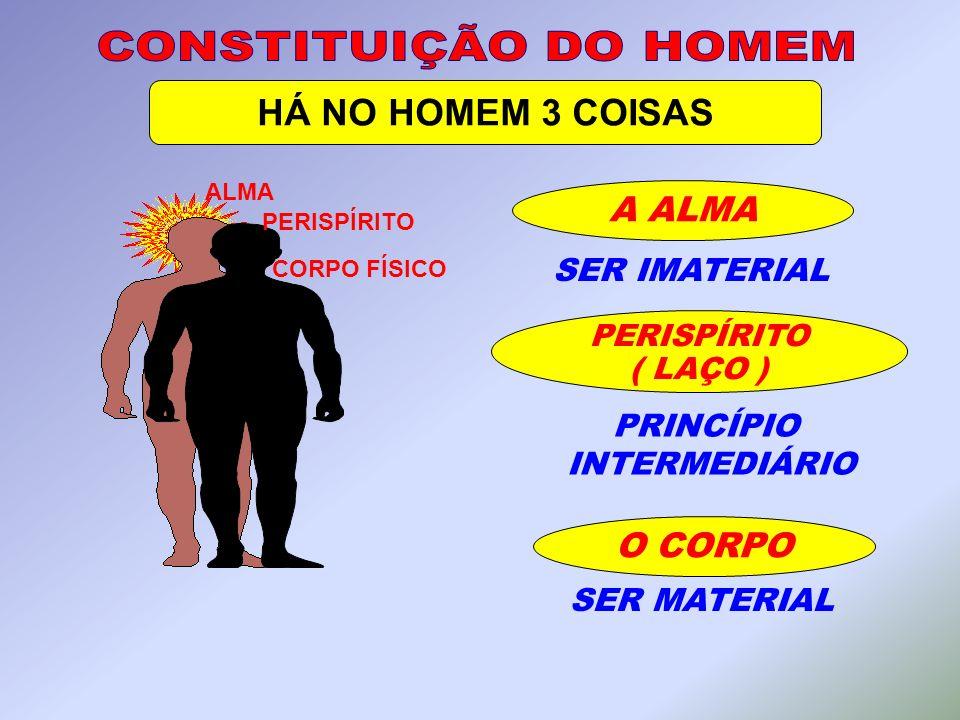 CONSTITUIÇÃO DO HOMEM HÁ NO HOMEM 3 COISAS A ALMA O CORPO