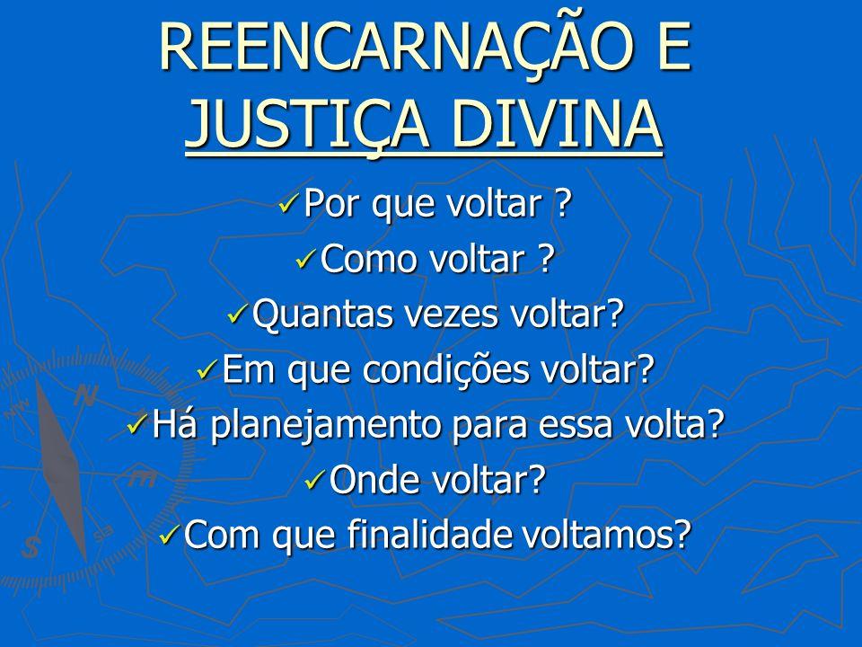 REENCARNAÇÃO E JUSTIÇA DIVINA