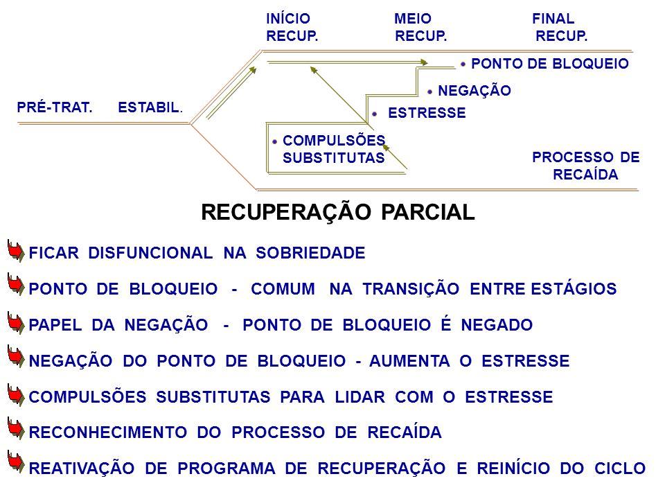 RECUPERAÇÃO PARCIAL FICAR DISFUNCIONAL NA SOBRIEDADE