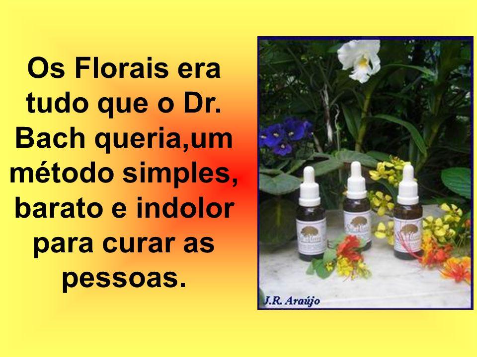 Os Florais era tudo que o Dr