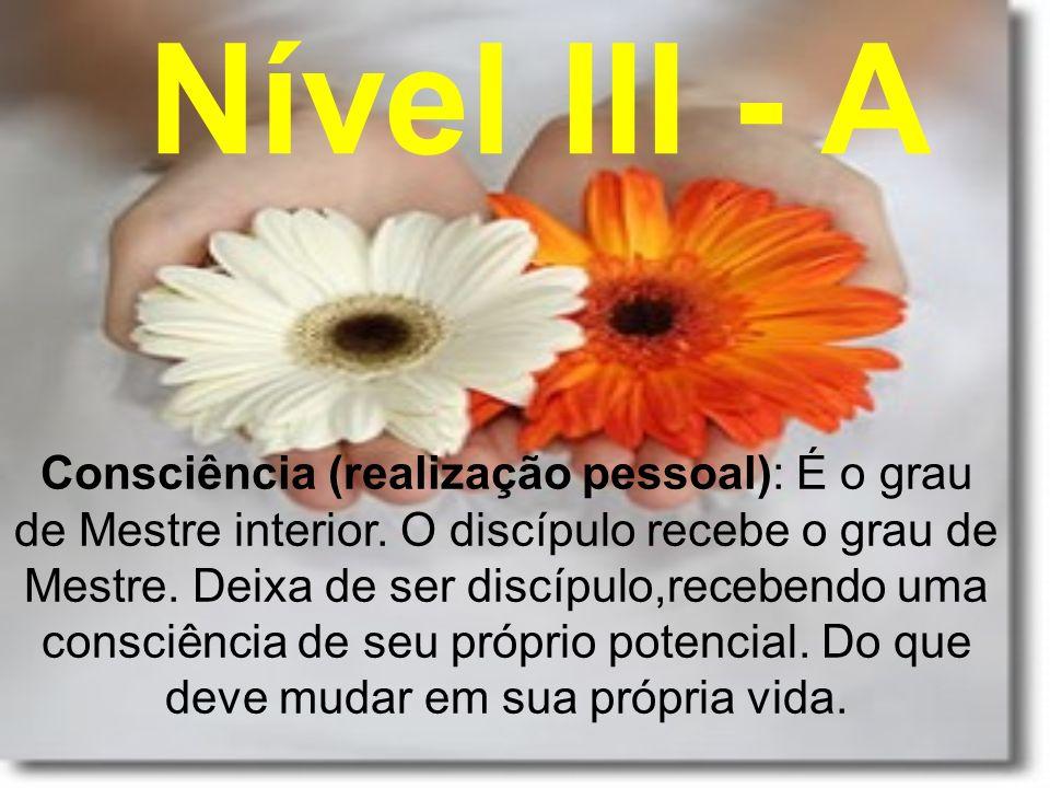 Nível III - A