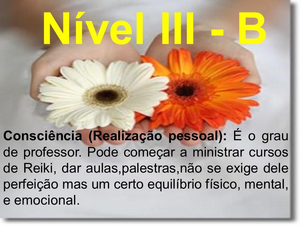 Nível III - B