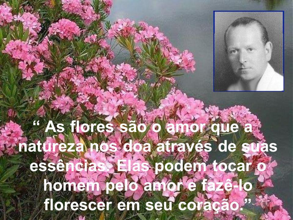 As flores são o amor que a natureza nos doa através de suas essências.