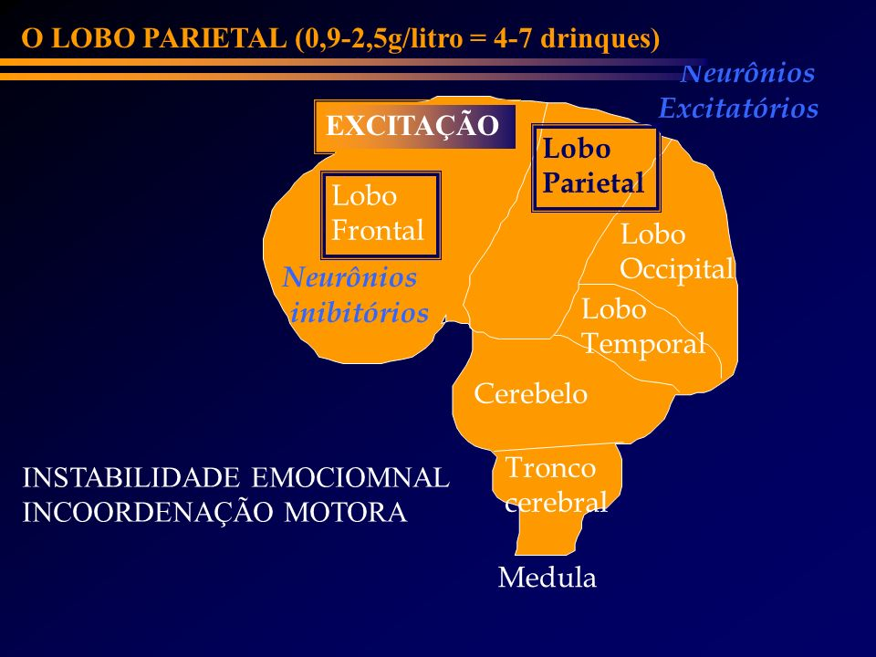 O LOBO PARIETAL (0,9-2,5g/litro = 4-7 drinques)