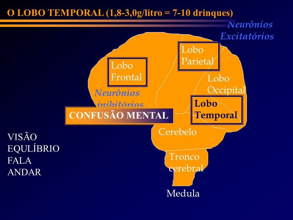 O LOBO TEMPORAL (1,8-3,0g/litro = 7-10 drinques)