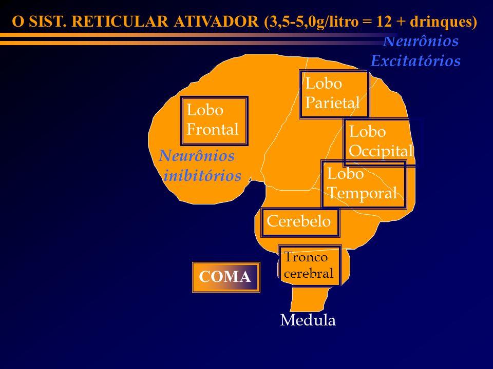 O SIST. RETICULAR ATIVADOR (3,5-5,0g/litro = 12 + drinques) Neurônios