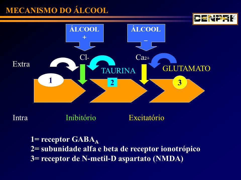 2= subunidade alfa e beta de receptor ionotrópico
