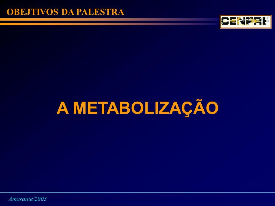 OBEJTIVOS DA PALESTRA A METABOLIZAÇÃO Amarante/2003