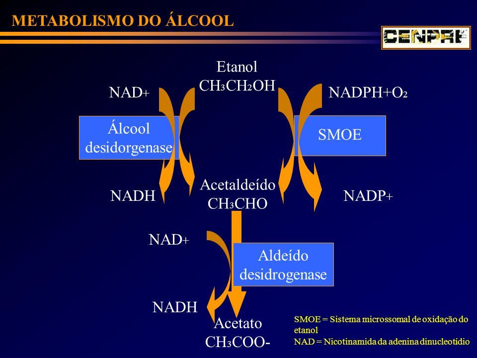 METABOLISMO DO ÁLCOOL Etanol CH3CH2OH NAD+ NADPH+O2 Álcool