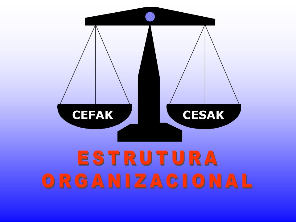 CEFAK CESAK ESTRUTURA ORGANIZACIONAL