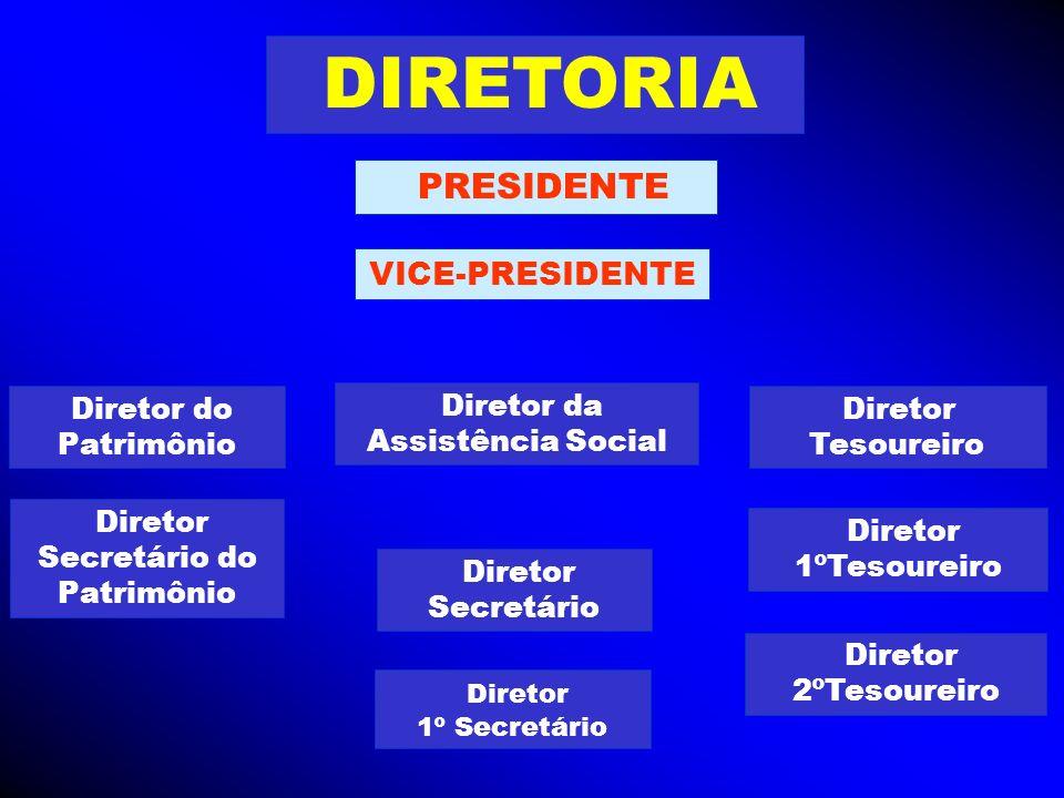 DIRETORIA VICE-PRESIDENTE Diretor da Assistência Social