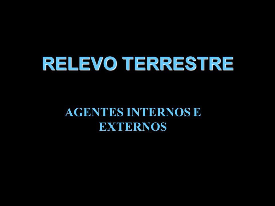 AGENTES INTERNOS E EXTERNOS