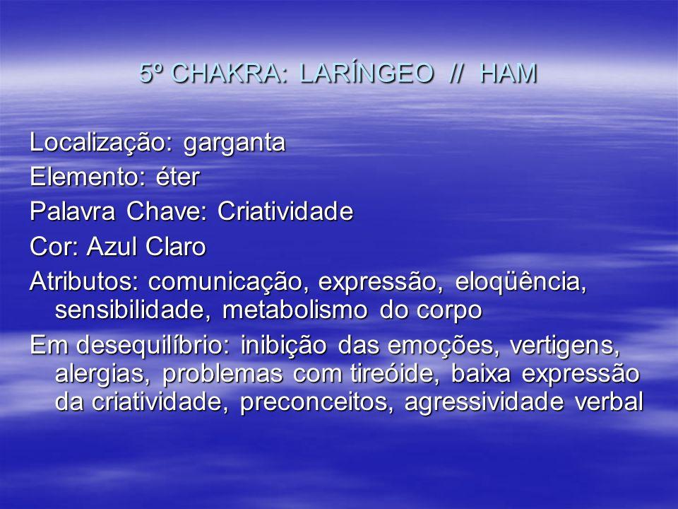 5º CHAKRA: LARÍNGEO // HAM