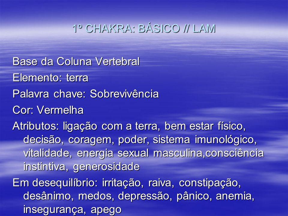 1º CHAKRA: BÁSICO // LAM Base da Coluna Vertebral. Elemento: terra. Palavra chave: Sobrevivência.
