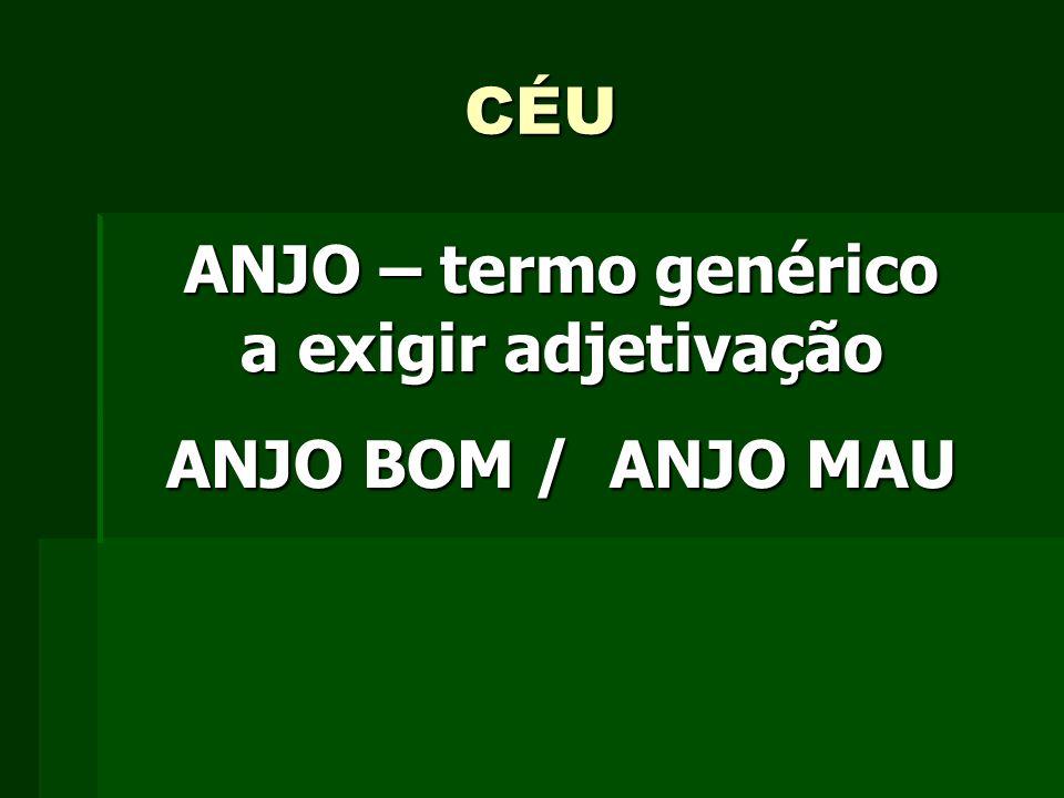 ANJO – termo genérico a exigir adjetivação