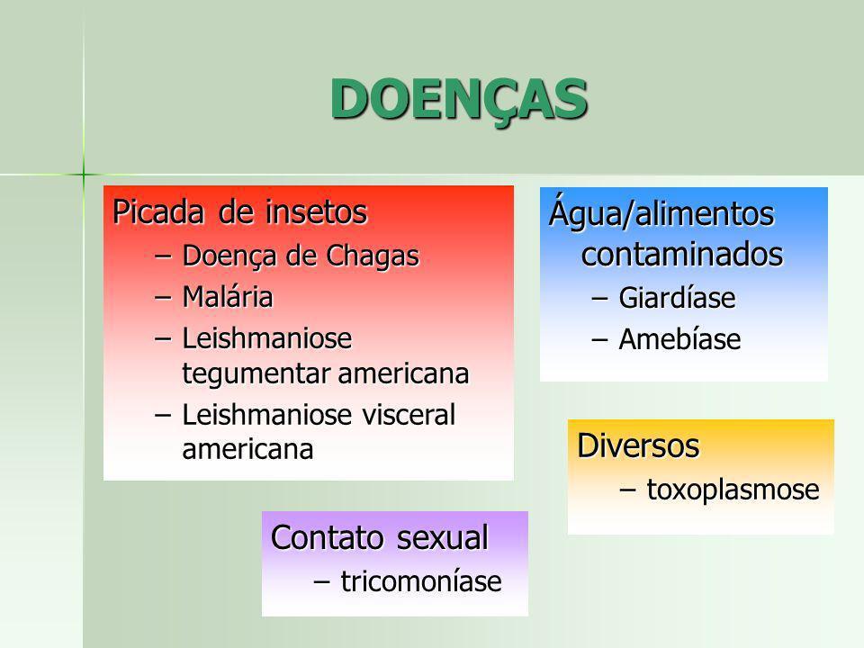 DOENÇAS Picada de insetos Água/alimentos contaminados Diversos