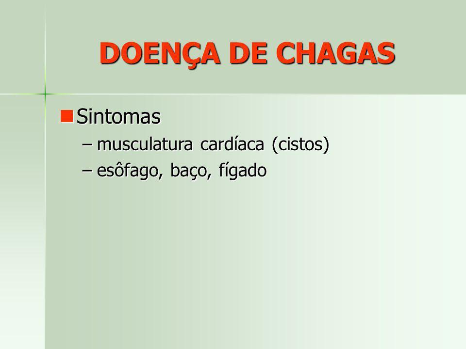 DOENÇA DE CHAGAS Sintomas musculatura cardíaca (cistos)