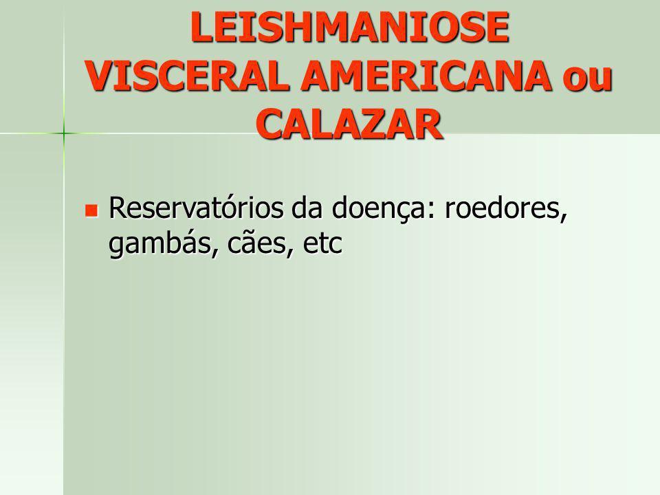 LEISHMANIOSE VISCERAL AMERICANA ou CALAZAR