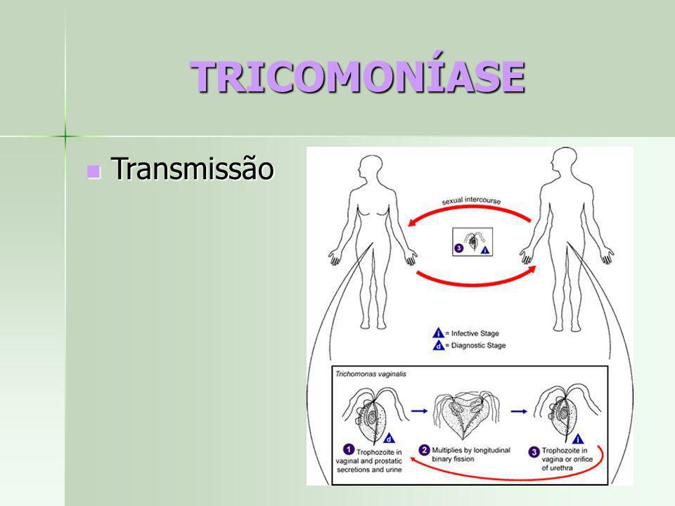 TRICOMONÍASE Transmissão