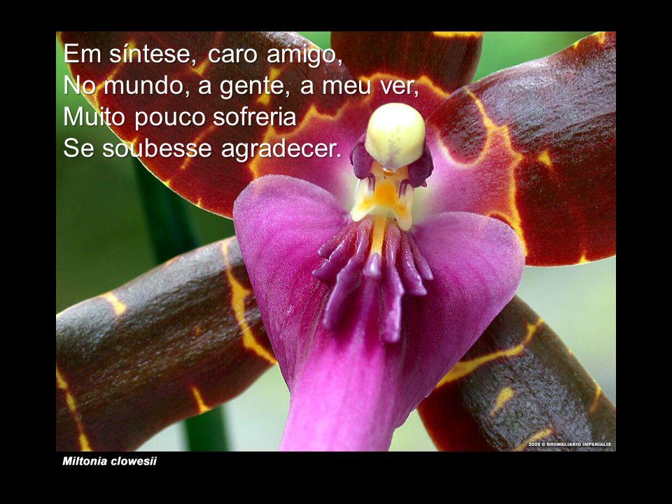 Em síntese, caro amigo, No mundo, a gente, a meu ver, Muito pouco sofreria Se soubesse agradecer.