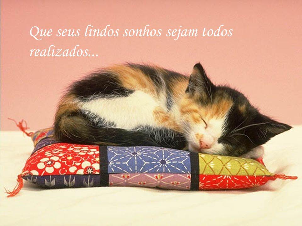 Que seus lindos sonhos sejam todos realizados...