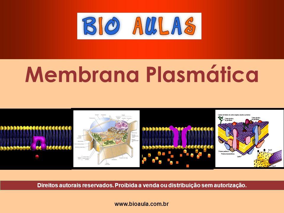 Membrana Plasmática Direitos autorais reservados. Proibida a venda ou distribuição sem autorização.