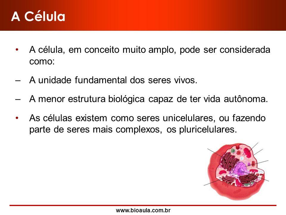 A Célula A célula, em conceito muito amplo, pode ser considerada como: