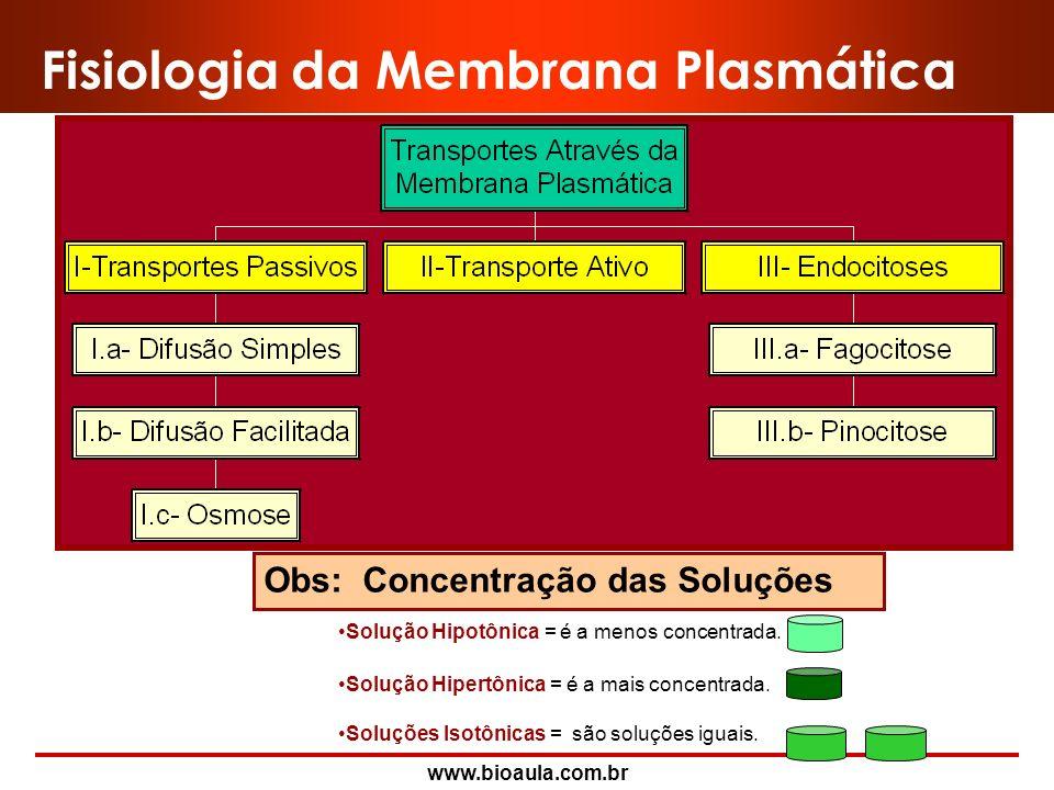 Fisiologia da Membrana Plasmática