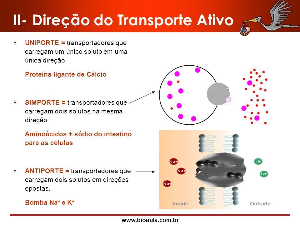 II- Direção do Transporte Ativo
