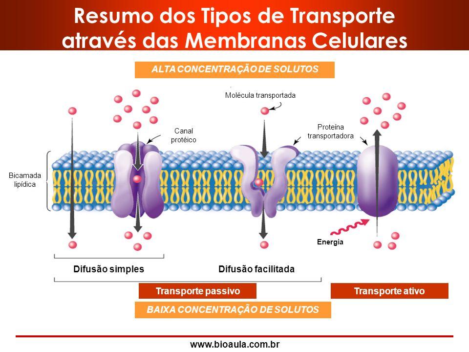 Resumo dos Tipos de Transporte através das Membranas Celulares