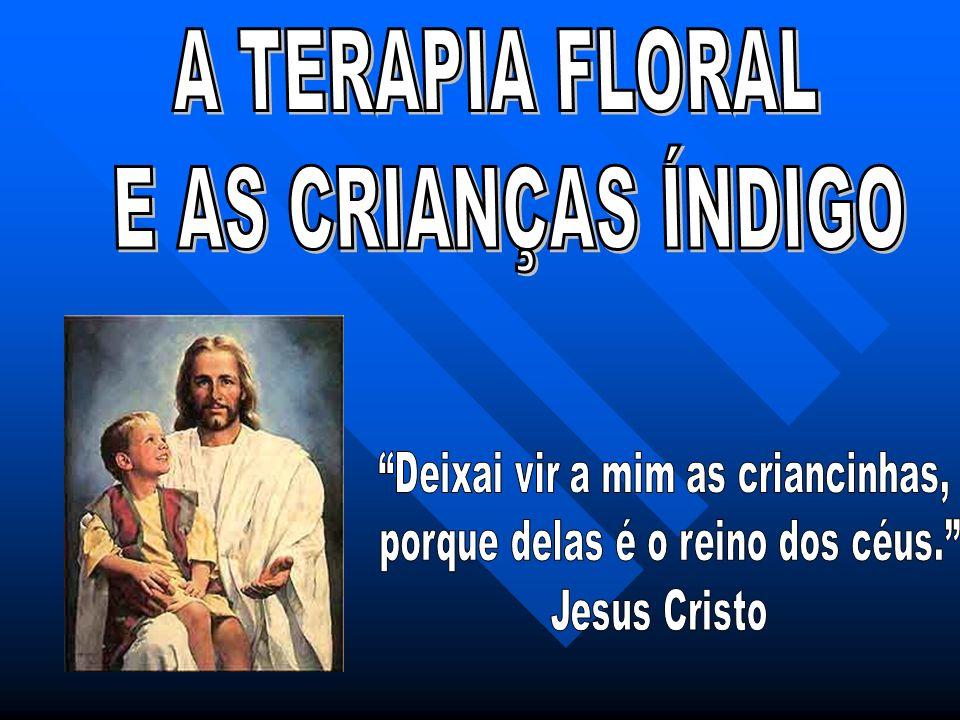 A TERAPIA FLORAL E AS CRIANÇAS ÍNDIGO