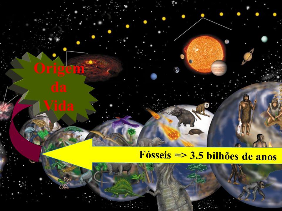 Fósseis => 3.5 bilhões de anos