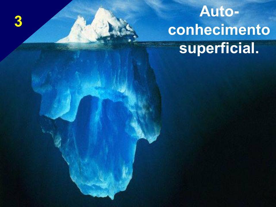 Auto-conhecimento superficial.