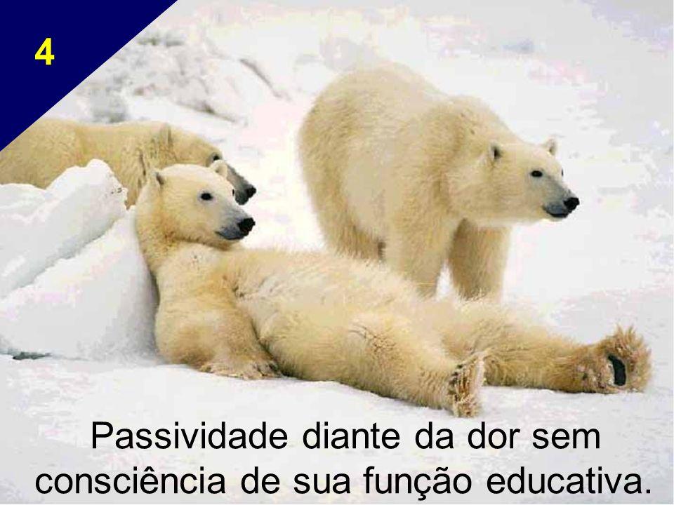 Passividade diante da dor sem consciência de sua função educativa.