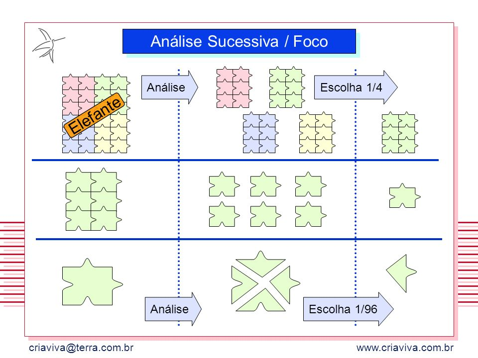 Análise Sucessiva / Foco