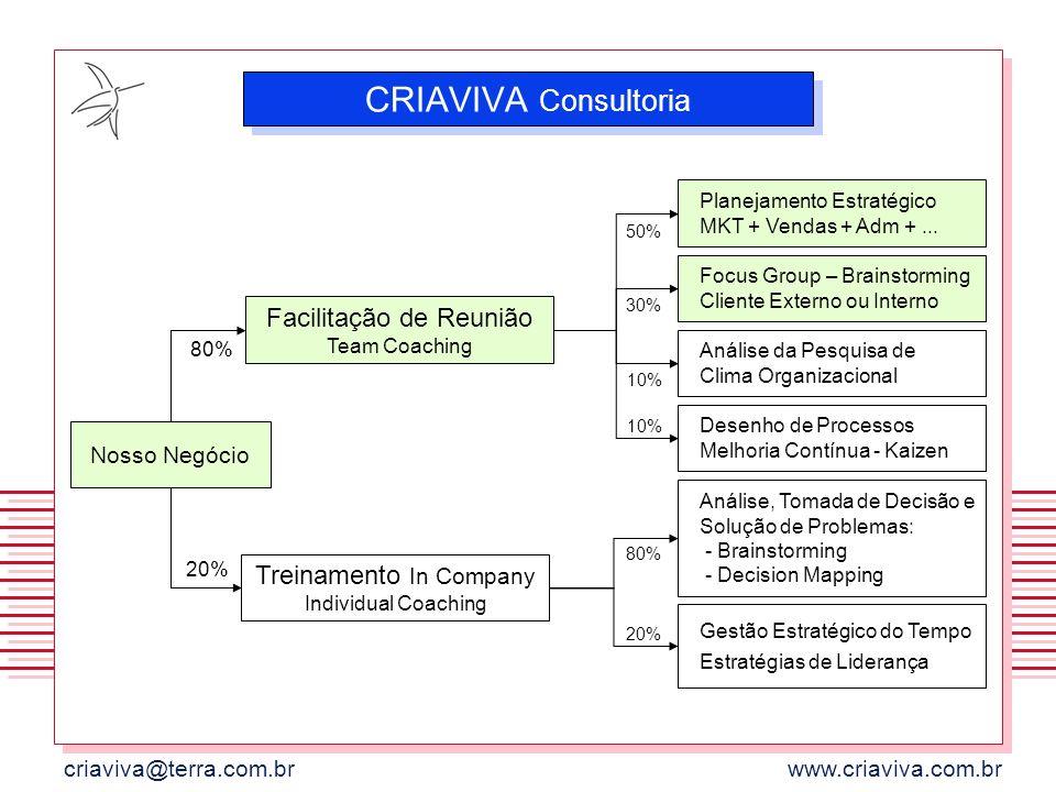 CRIAVIVA Consultoria Facilitação de Reunião Team Coaching