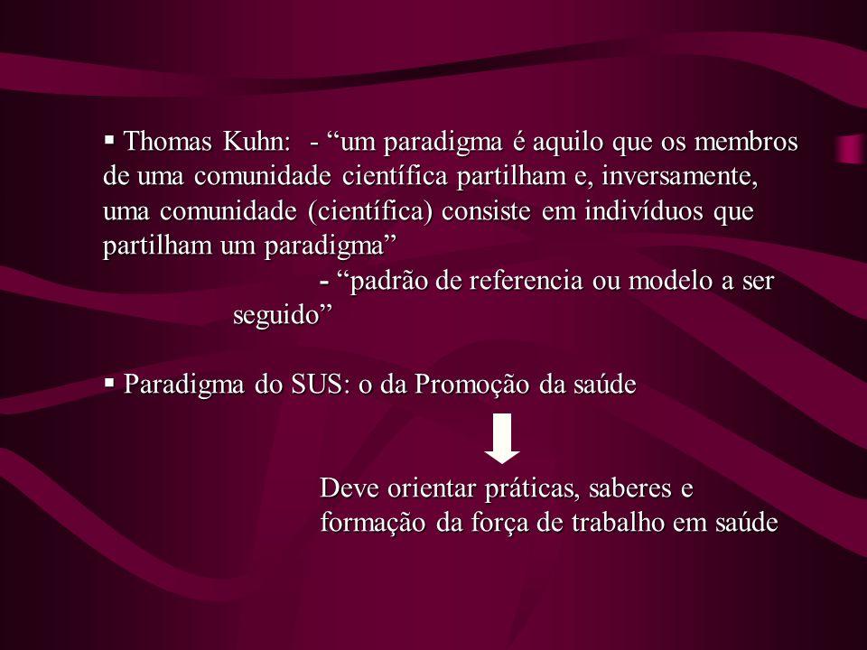Thomas Kuhn: - um paradigma é aquilo que os membros de uma comunidade científica partilham e, inversamente, uma comunidade (científica) consiste em indivíduos que partilham um paradigma