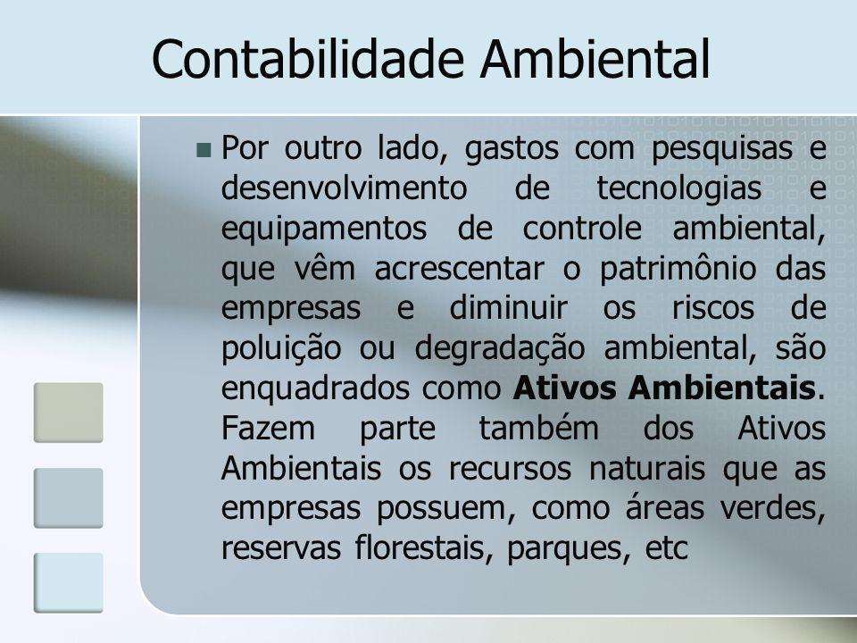 Contabilidade Ambiental