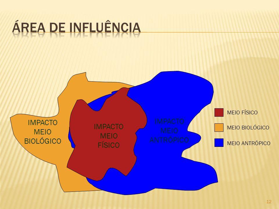 ÁREA DE INFLUÊNCIA IMPACTO IMPACTO IMPACTO MEIO MEIO ANTRÓPICO