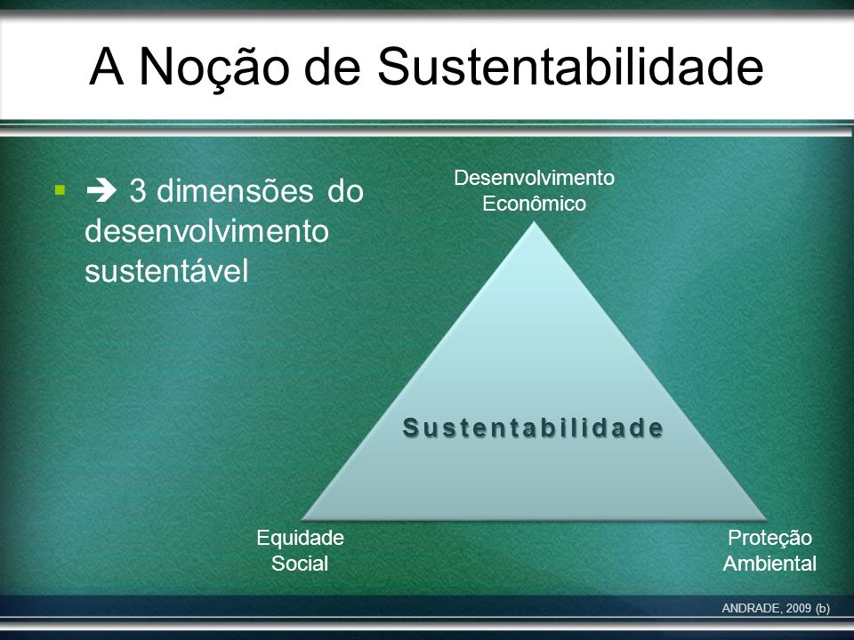 A Noção de Sustentabilidade