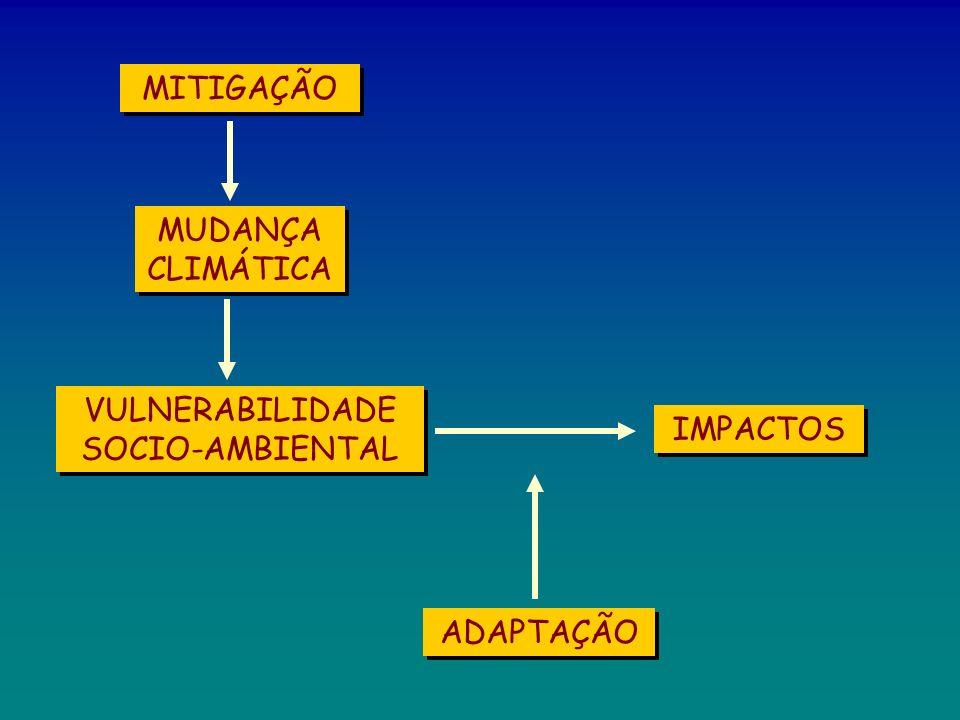VULNERABILIDADE SOCIO-AMBIENTAL